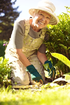 Gardening Is Great For Senior Health This Spring