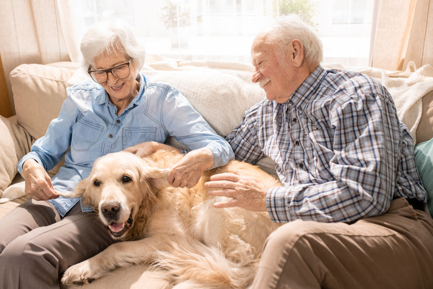Our memory care services at Regency Jackson incorporate pet therapy which can help diminish the stress, loneliness, and agitation associated with dementia and other memory conditions.
