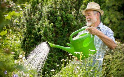 Health Benefits of Gardening for Seniors Jackson