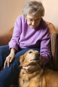 Pet Therapy for Seniors of