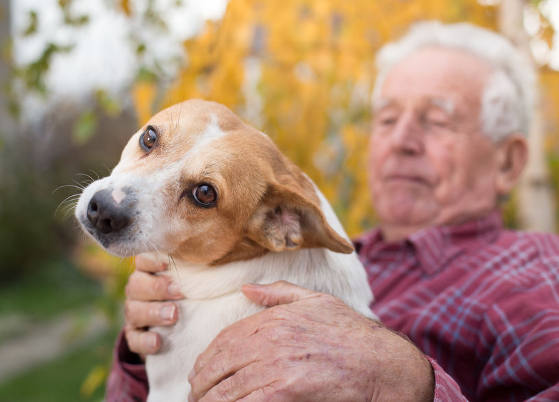 Pet Therapy for Seniors of Jackson